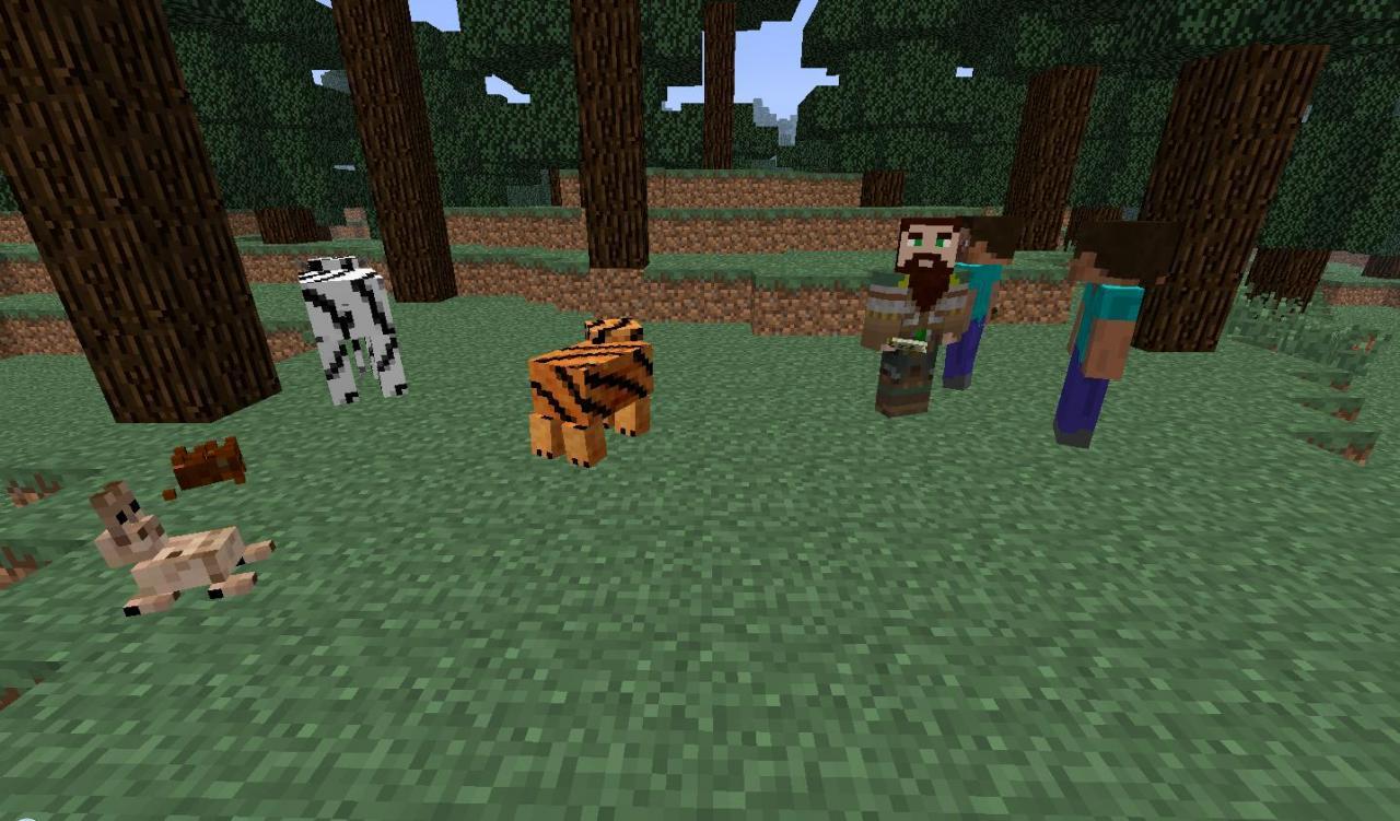 Игру Пчела Кенгуру